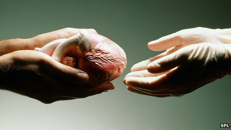 _68575776_heart_donation_spl