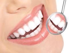 Oral Biology