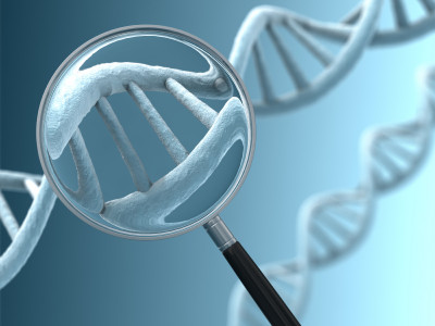 A magnifying glass focussing on a section of a DNA strand.  Very high resolution 3D render.