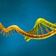 mRNA_RGB_N_I_L_000_b