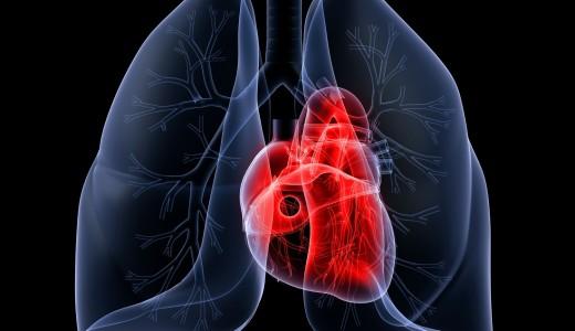 cardiac+and+pulmonary