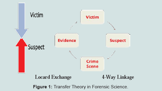 Evidence based outcome study