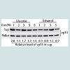 JVIT-2377-6668-01-0002-thumbFig5