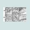 JNH-2469-4185-02-0011-thumbfig5