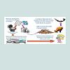 JES-2471-4879-03-0016-thumbfig3