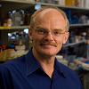 Dr. Anton Wellstein